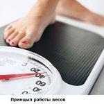Как разобрать электронные весы – Как починить электронные напольные весы своими руками?